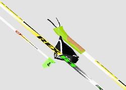 Rex racing poles